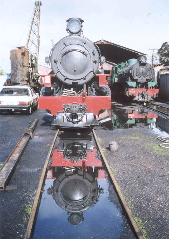 Pm 706 & W 903 at Pinjarra Steam Loco Depot 5/6/02           by N. Blinco